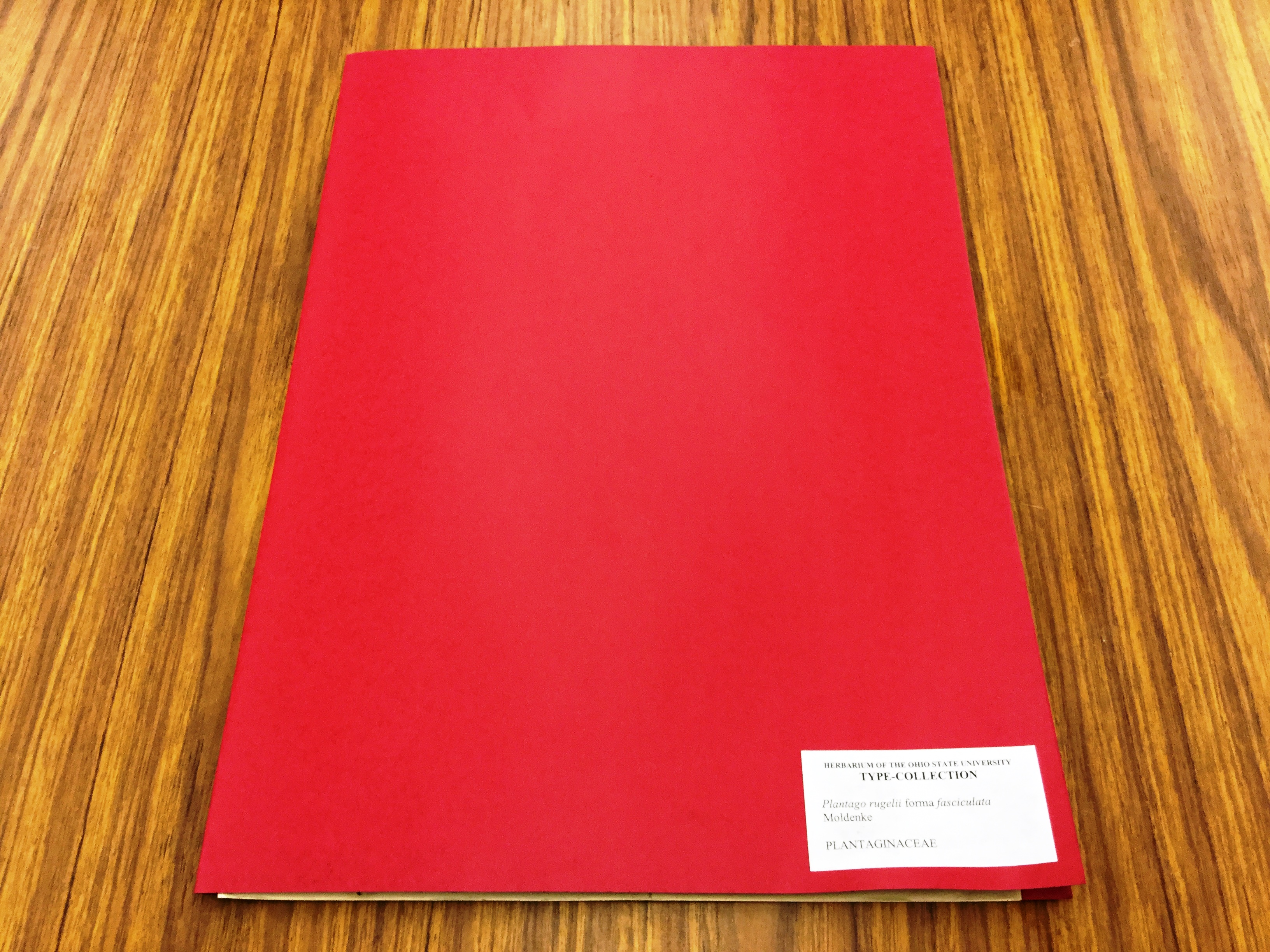 Cover of a file of a type specimen.