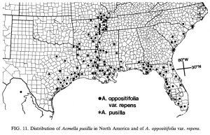 distribution map of Acmella oppsitifolia var repens