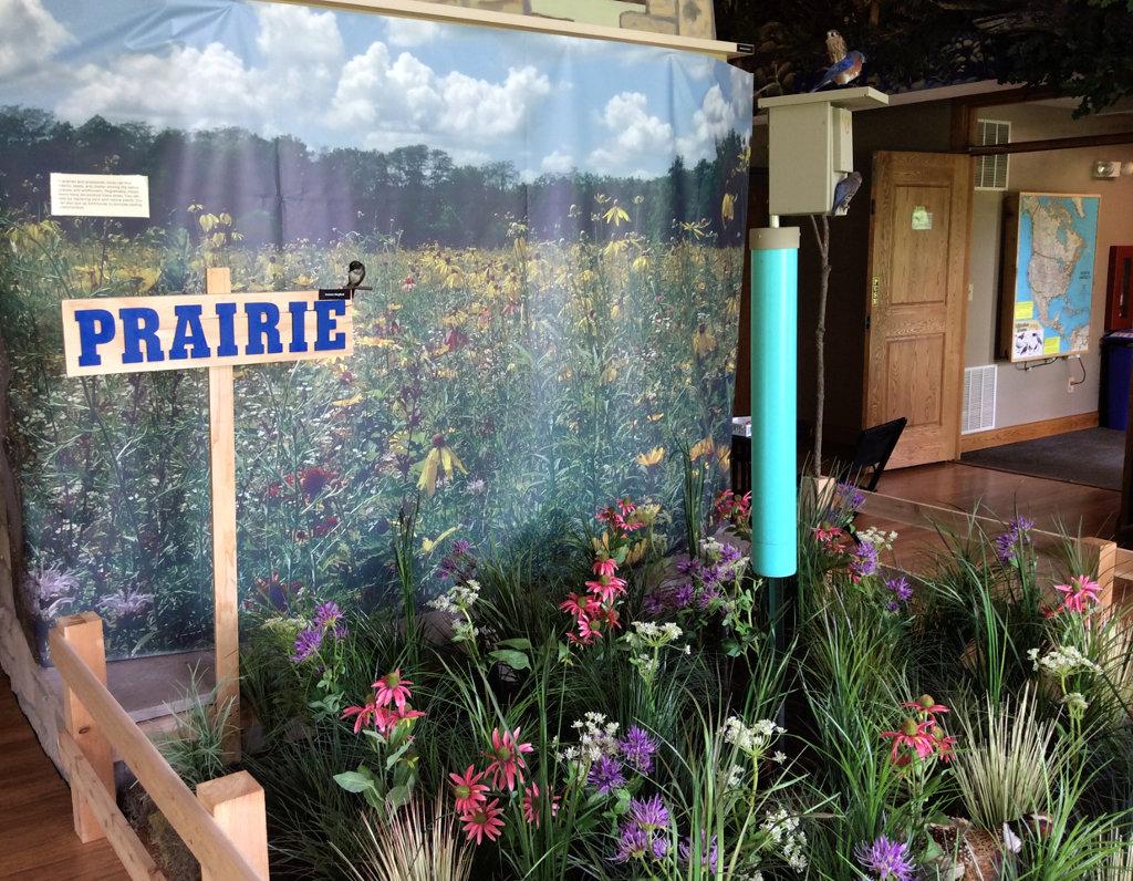 display of prairie