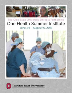 summer institute 2015 brochure_Page_01