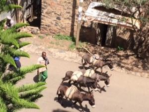 ethiopia-day1