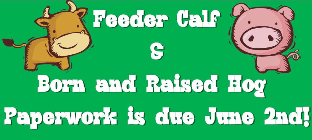 4-H calf and hog deadline