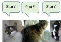 Pets: Star?