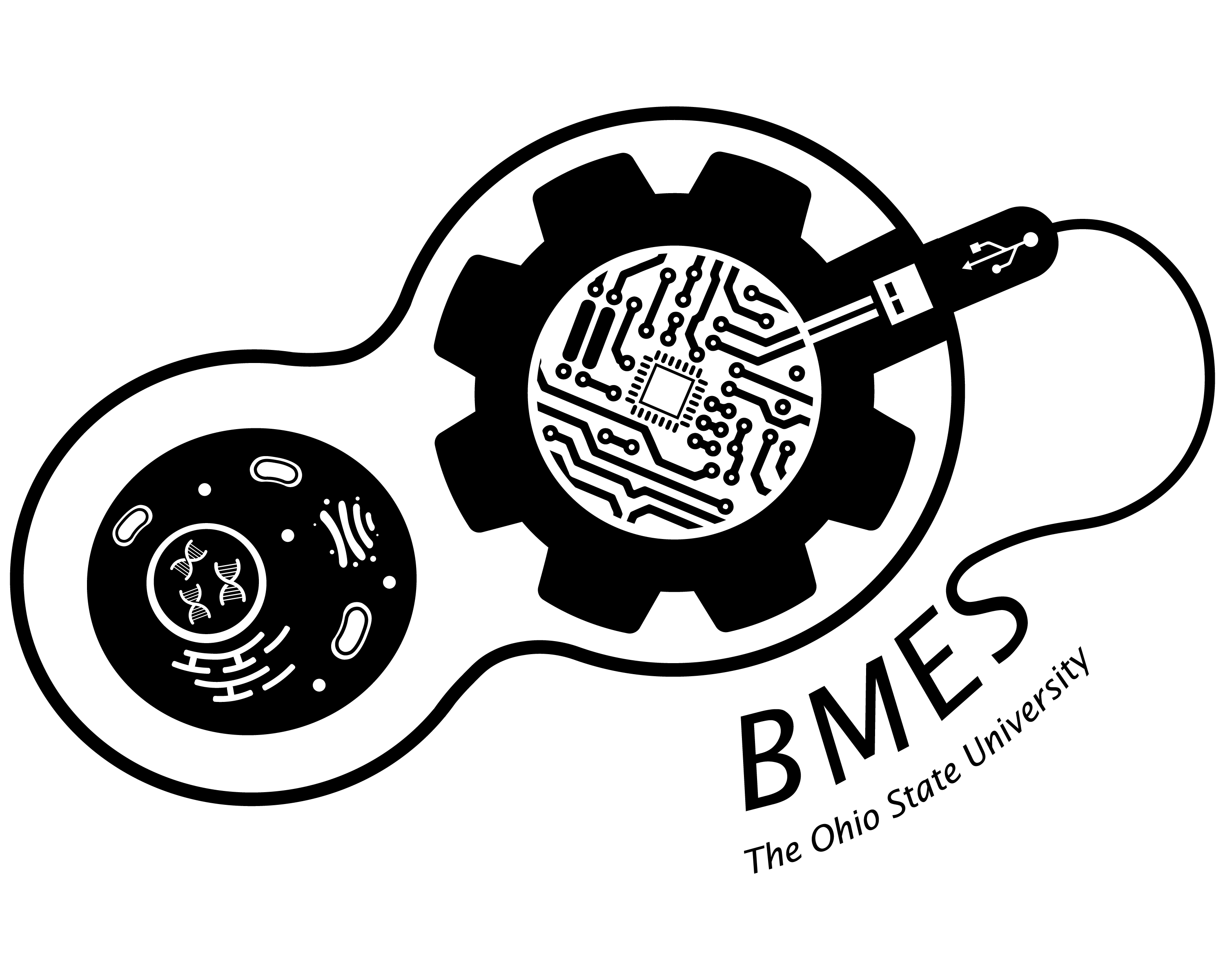 BMES at OSU | The Official Website for the Biomedical
