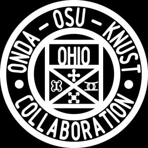 ghana logo black background