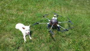 My hexacopter next to my puppy Toby, a jack russel terrier/chihuahua mix.