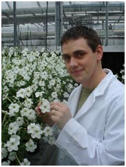 Shaun Broderick collecting petunia corollas for his RNA sequencing project.
