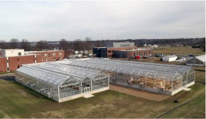 New williams Greenhouse3