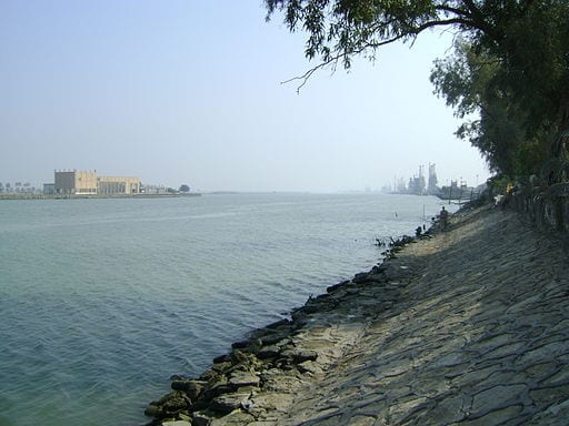 Image of the Shatt al Arab marsh area of the Tigris, Iraq