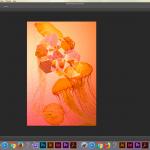 Geometric jellyfish - workspace