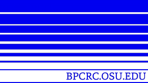 bpcrc_flag