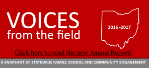 Link to Voices from the field Annual Report