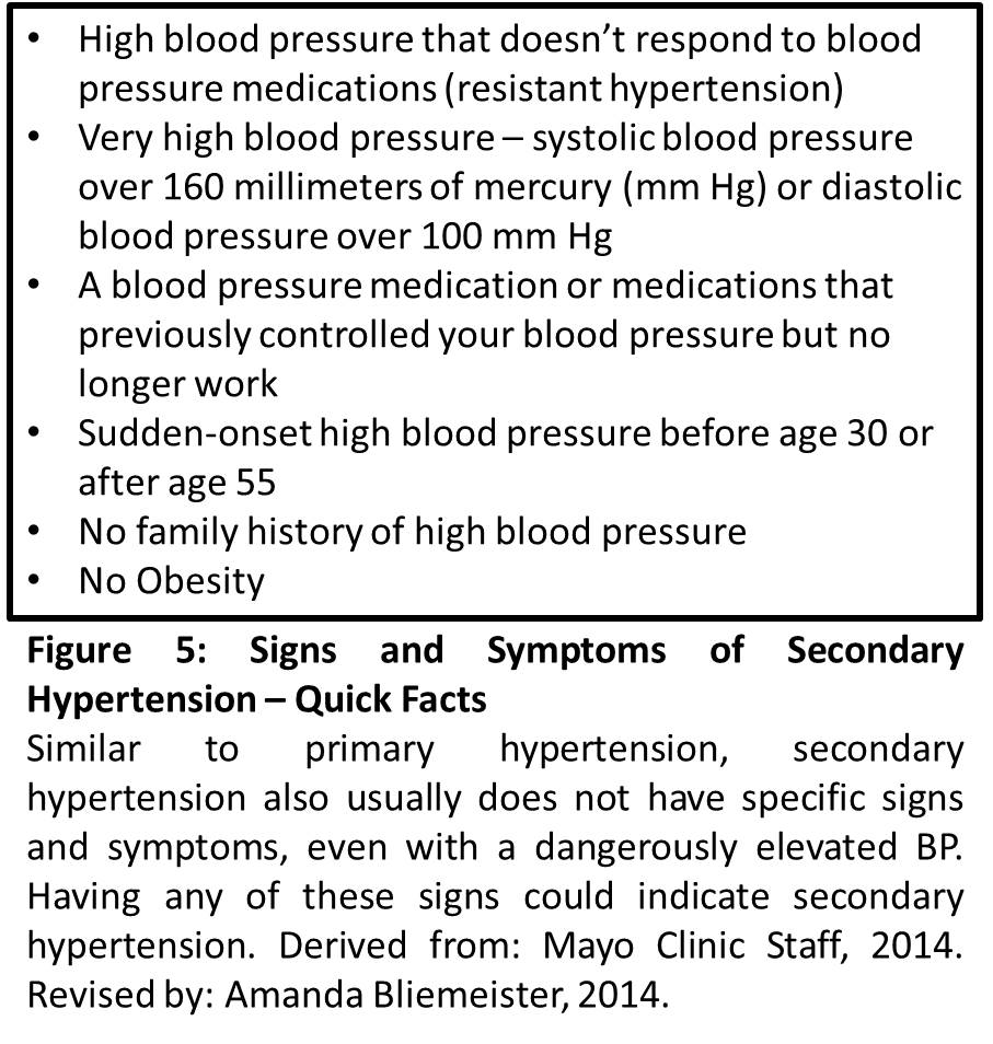 Bmw 6: Hypertension Case Study