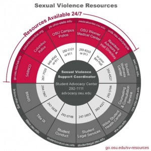 sexual violence resource-wheel-bisg