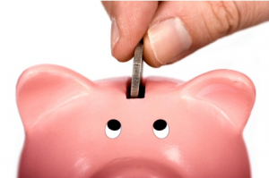 Piggy Bank_snagit