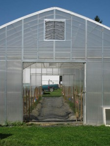 Endwall of 30 ft x 80 ft high tunnel featuring two 4 ft x 8 ft sliding panels as doors (now open) and a louvered vent above door frame. & High Tunnel Doors and Endwalls | Vegetable Production Systems Laboratory