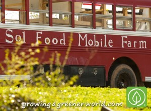 325-solfoodmobile-bus-300x220