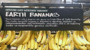 Earth University bananas for sale at Whole Foods on Lane Avenue in Columbus.