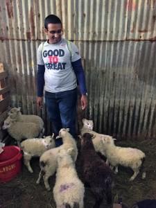 Yash makes some new friends at Bjarteyjarsandur farm.