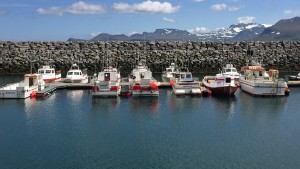 Fishing and tourist boats in Olavsvik.