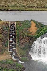 Salmon ladder at Faxi falls.