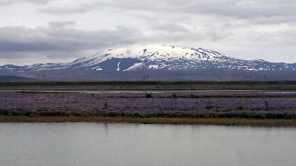 The imposing Hekla volcano.