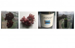 Wine + Grapes and their Interaction with Water