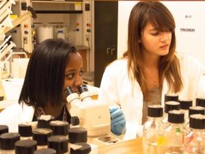Molecular Genetics Lab