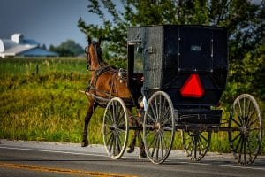 amish buggy on road.
