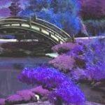 Forgiveness: A Bridge to Civility (by Kathrynn Thompson)