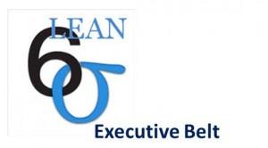 Executive Belt