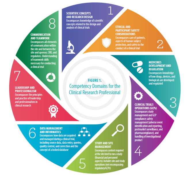 core competencies for clinical research professionals