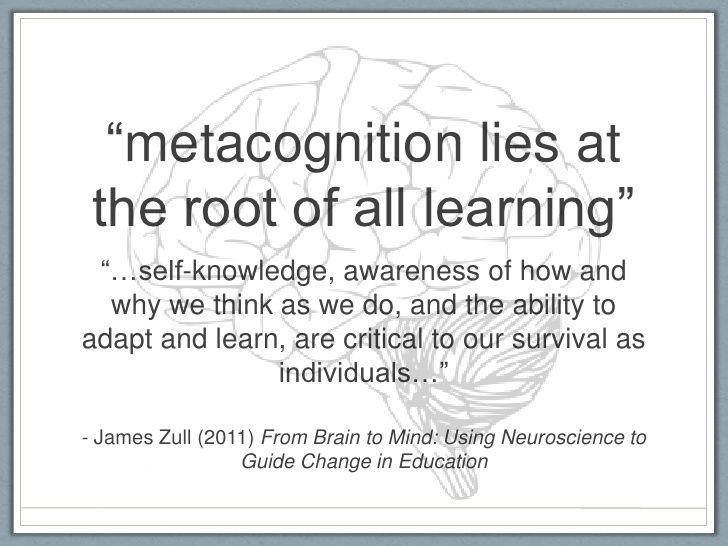 """Metacognition lies at the root of all learning"" - James Zull (2011)"