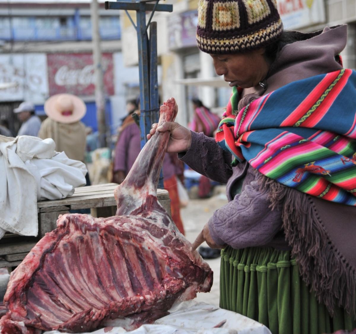 Bolivia touts llama as healthy alternative to beef - Star2.com