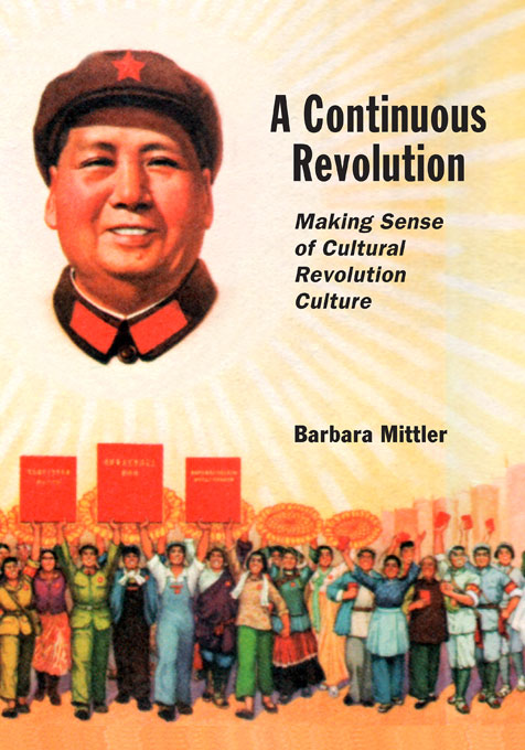 Cover for A Continuous Revolution