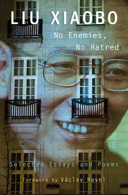Book cover for No Enemies, No Hatred