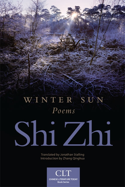 Book cover for Winter Sun
