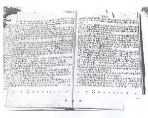 Fig.4: manuscript of <em>Nanjing</em>.