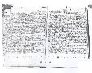 Fig.4: manuscript of <em>Nanjing</em>.