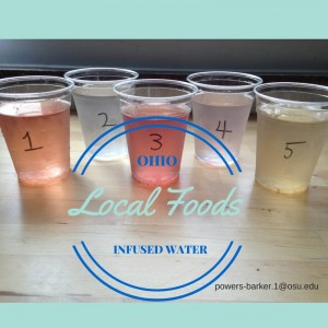 OH Local Foods infused water samples
