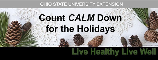 pinecones and snow with title calm down for the holidays