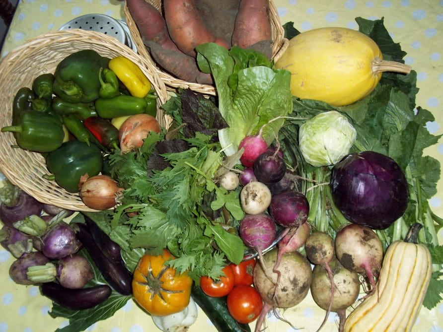 tabletop of fresh summer vegetables