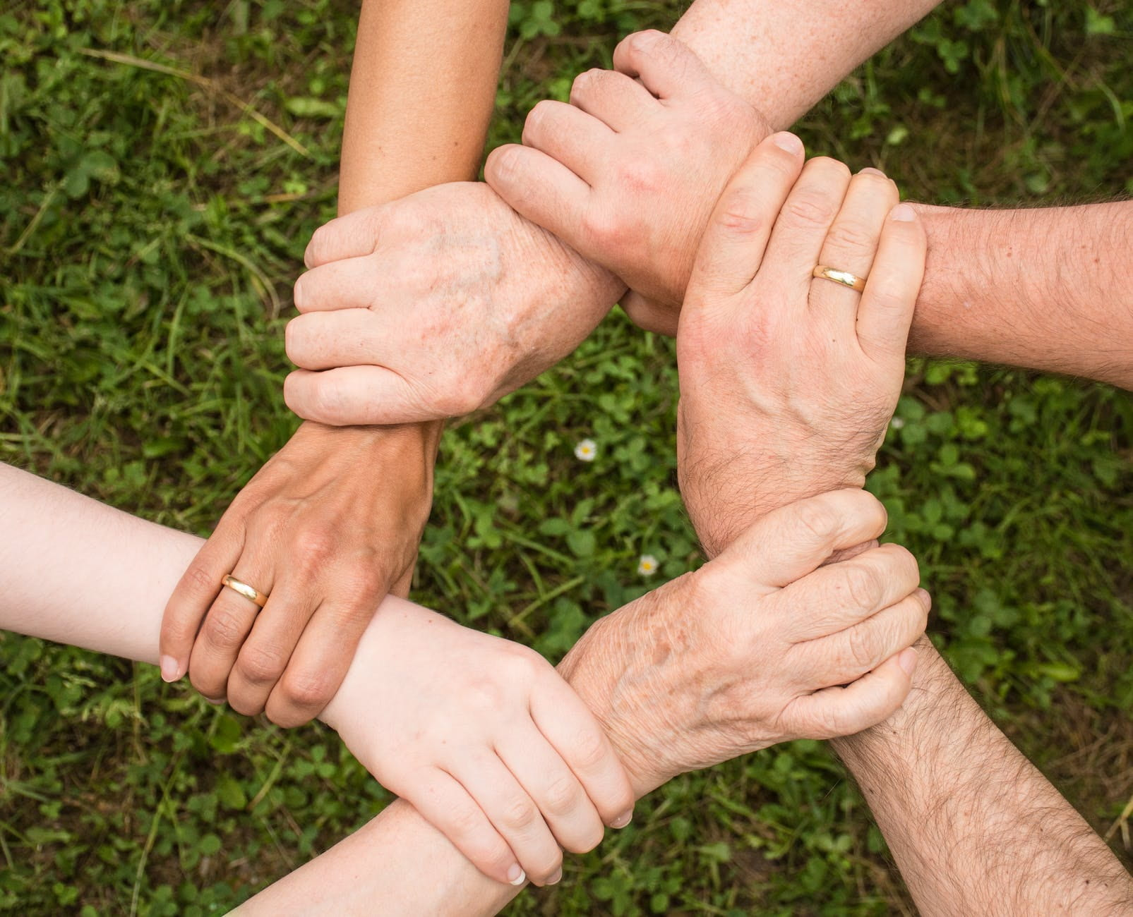 five hands and arms linked on grass background