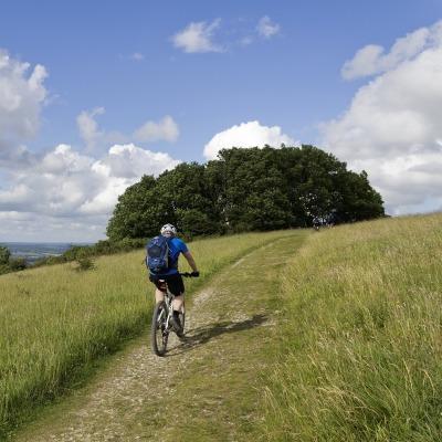 man riding bike on a grassy path