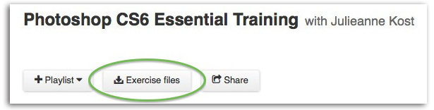 Screenshot showing Exercise Files download button beneath the title of the video tutorial set.