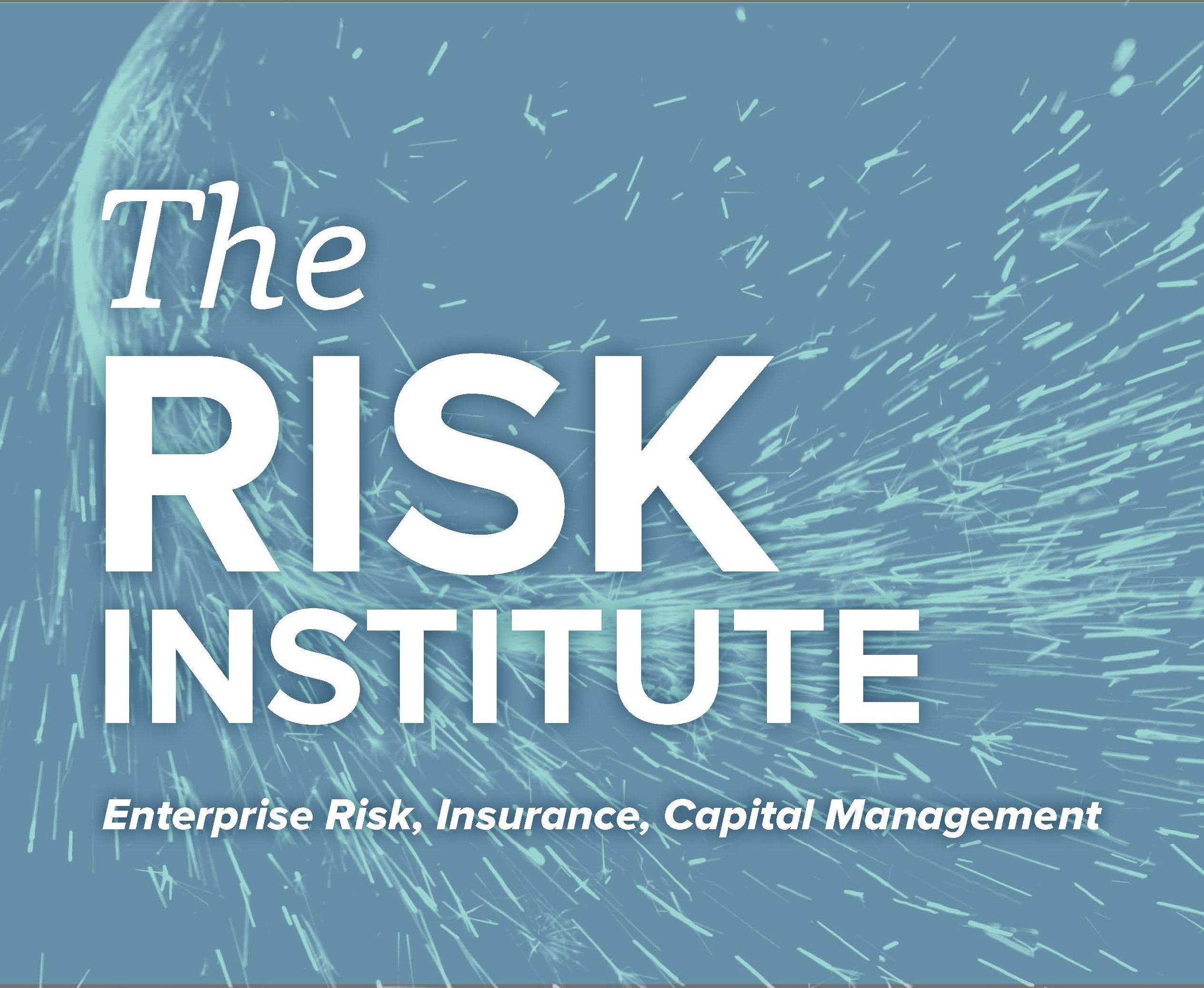 RiskInstitute_block D