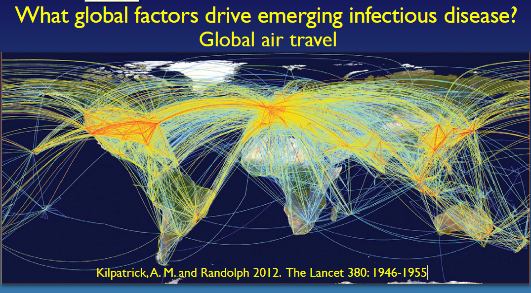 Global Air Travel Kilpatrick and Randolph
