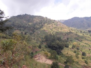 You can go hiking in the Uluguru Mountains!
