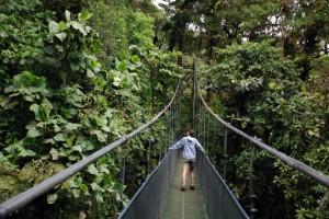 Monteverde-sky-walk