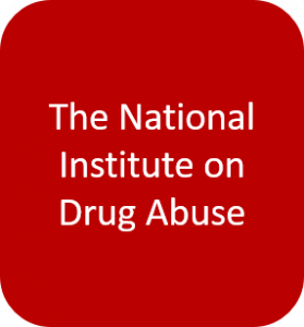 National Institute on Drug Abuse button